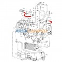 Manguito sistema refrigeración a radiador de aceite