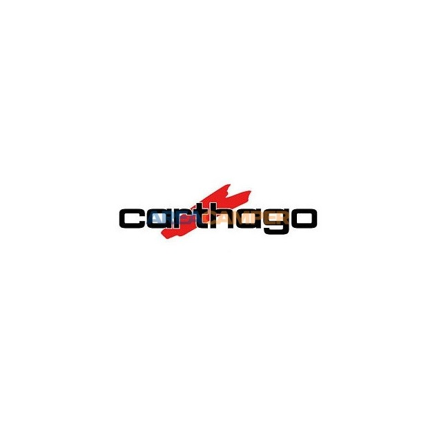 Decal Carthago