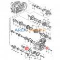 Conjunto piñones 5ª velocidad VW T4 caja cambios manual tipo 02B 33/46 (0,717)
